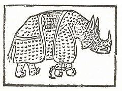 Η πρώτη γνωστή εικόνα ρινόκερου είναι μία πρωτόγονης τεχνοτροπίας ξυλογραφία που χρησιμοποιήθηκε για την εικονογράφηση ποιήματος του Giovanni Giacomo Penni, δημοσιευμένου στη Ρώμη τον Ιούλιο του 1515 (Biblioteca Colombina, Σεβίλη).