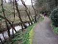 Nature trail along Hubberston Pill - geograph.org.uk - 369732.jpg