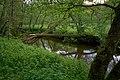 Naturschutzgebiet Nettetal Kreis Mayen-Koblenz Rheinland-Pfalz.jpg