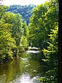 Neckar - panoramio (8).jpg