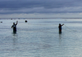 Net fishing on Aitutaki Island, Cook Islands - journal.pbio.1001387.g002.png