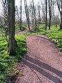 New path N Berwick to E Linton - geograph.org.uk - 400317.jpg