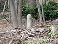 Newton Lower Falls Branch whistle post, April 2016.jpg