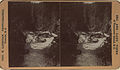 Niahara Canon Falls on the Esquimalt and Nanaimo Railway, Vancouver Island (for stereoscope) (HS85-10-12146).jpg