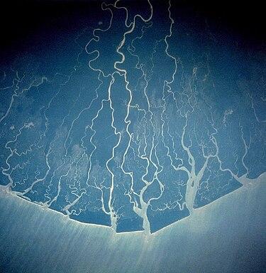 Niger Delta - Wikipedia