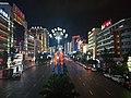 Nightscape of Panzhou3.jpg