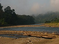 Noa Dehing River, 40 Mile.jpg