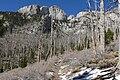 North Loop trail 1.jpg