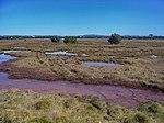 Nudgee Bech QLD - panoramio.jpg