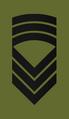 OR8 NOR - Kommandersersjant Hær.png