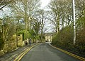 Oaks Lane - geograph.org.uk - 1222583.jpg