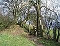 Offa's Dyke near Bronygarth - geograph.org.uk - 325645.jpg
