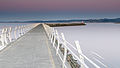 Ogden Point Breakwater in Victoria at dawn-02.jpg