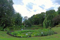 Ogród Botaniczny Uniwersytetu Marii Curie Skłodowskiej W