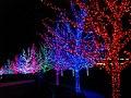 Oklahoma City Christmas Lights - panoramio - MARELBU (10).jpg