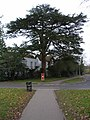 Old Bracknell Lane East - geograph.org.uk - 126229.jpg