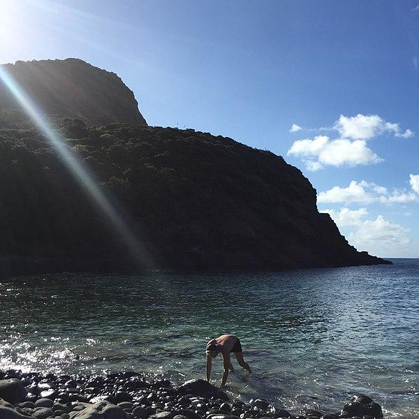 File:Old Gulch Lord Howe Island, NSW, Australia.jpg