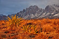 Organ Mountains-Desert Peaks National Monument (17901185052).jpg