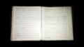 Original Gottschall Manuscript.PNG