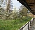 Orsoy, Germany - panoramio.jpg