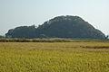 Otogo Castle.JPG
