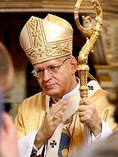 Péter Erdő Catholic cardinal