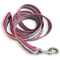 PPD-Leash-PinkGreenStripes.jpg