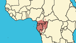 Central chimpanzee - Image: Pan troglodytes troglodytes area