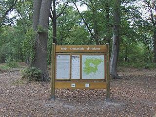 Forest of Halatte forest in France