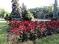 Park - panoramio (158).jpg