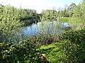 Park nieuw Husken - Lente 2012 - panoramio.jpg