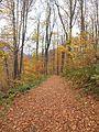 Park prirode Papuk.jpg
