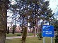 Parku i paqes Dr. IBRAHIM RUGOVA.jpg