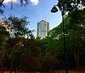 Parque Central desde el Parque Los Caobos, Torres de Parque Central. Vicente Quintero fotógrafo.jpg
