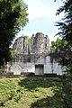 Parque Yaxha Nakum Naranjo La Catedral IMG 2310 01.jpg