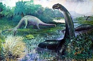 Illustration of a Brontosaurus (nowadays calle...