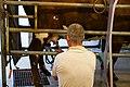 Pasture Nectar Farm (15118847031).jpg