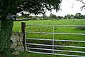Pasture at Kiltoom - geograph.org.uk - 964701.jpg