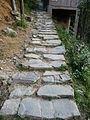 Path in Longji 03.JPG