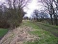 Path on disused Railway Embankment - geograph.org.uk - 735183.jpg