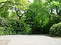 Pathway through Bellahouston Park - geograph.org.uk - 1322194.jpg