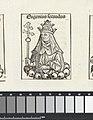 Paus Eugenius II Eugenius secundus (titel op object) Liber Chronicarum (serietitel), RP-P-2016-49-57-5.jpg