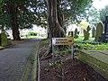 Penarlag - Church of St Deinol A Grade II* in Hawarden, Flintshire, Wales x75.jpg