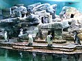 Penguinarium, Zoo Prague.jpg