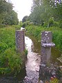 Penstock posts in the stream, Fethard, Co. Tipperary - geograph.org.uk - 207577.jpg