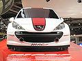 Peugeot207RCup3.JPG