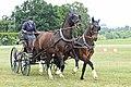 Pferdesportveranstaltung in Seifersdorf (Jahnsdorf) ..2H1A7046WI.jpg