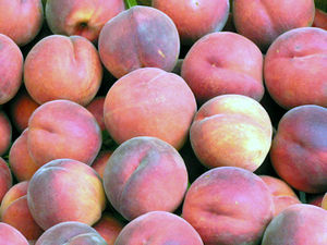 Peach fruits Suomi: Persikan hedelmiä