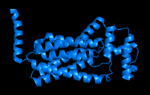 Phosphatidate phosphatase - PgpB (PDBe: 5jwy) cartoon with ribbons. Made in MacPyMOL.