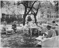"Photograph of President Truman eating a picnic lunch on the lawn of the ""Little White House"" at Key West, Florida... - NARA - 200535.tif"